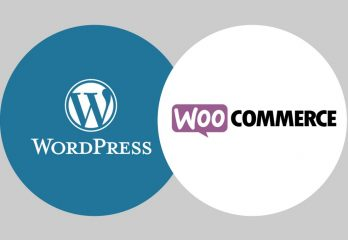 Formation WordPress Aurillac